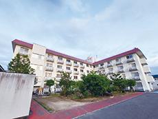 ボランティアによるハワイアンダンスを鑑賞